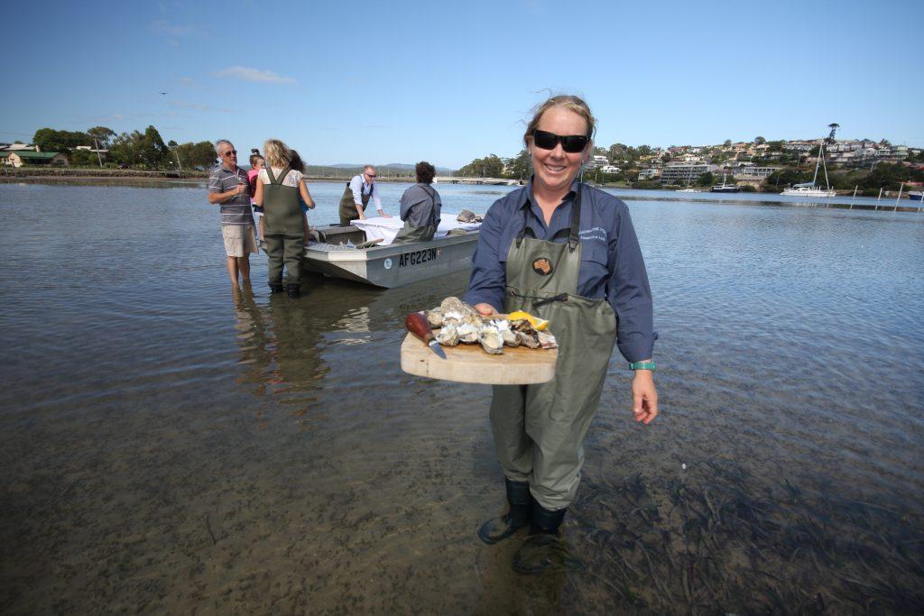oysters, oyster coast, Pambula